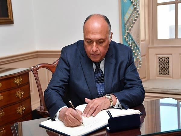 Egyptian FM calls on new Israeli gov't to resume regional peace process