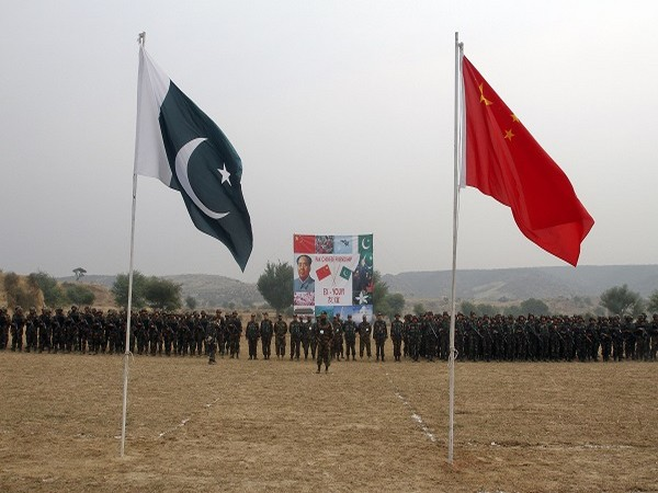 China, Pakistan launch online agro-industrial platform to boost cooperation