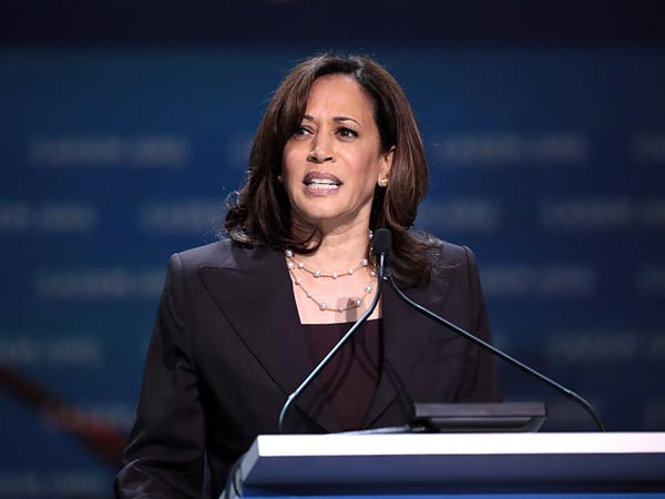 Kamala Harris slammed for tweet sucking up to small businesses after bailing out rioters