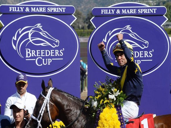 Breeders' Cup horse named 'Covfefe' wins $1M race