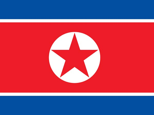 N. Korea test-fires new anti-aircraft missile: state media