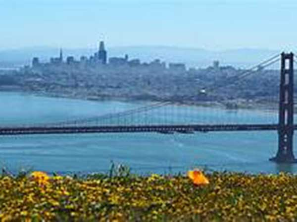 'Overpaid executive tax' going to vote in San Francisco in November