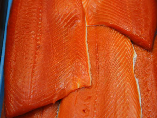 N.B. seafood giant vows change after hidden camera shows 'unacceptable' treatment of salmon