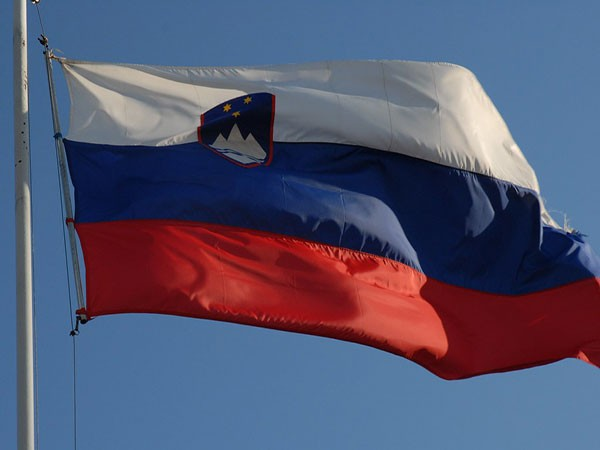 Slovenian president meets with senior Chinese diplomat on bilateral ties