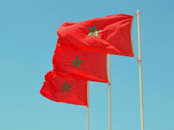 9.1 tonnes of cannabis seized in SW Morocco