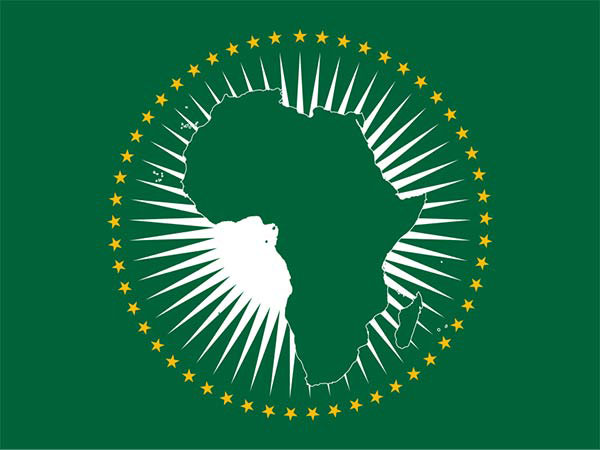 """COVID-19 pandemic offers """"incredible opportunity"""" to rethink Africa's development path: AU official"""