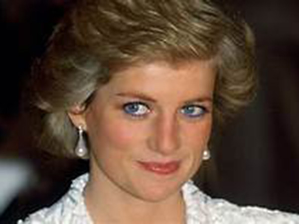 Prince Harry, Prince William to split Princess Diana's memorial fund for charities: report