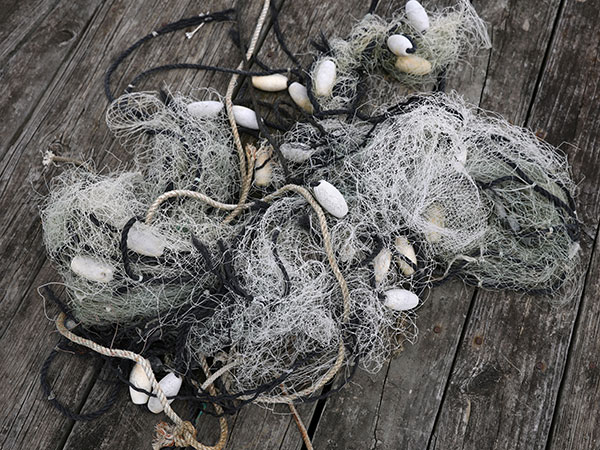 What is ghost fishing and why is it killing dolphins, whales and turtles?