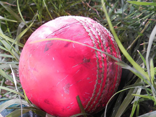 Bangladesh elect to bat first in pink ball Test
