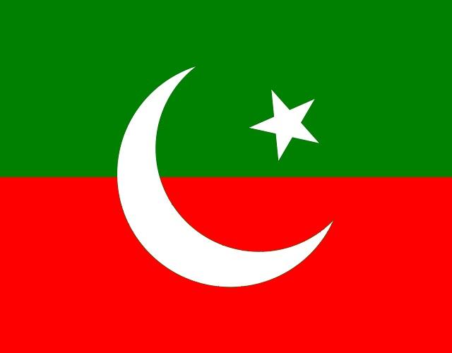 PTI's social media guru to head govt digital wing