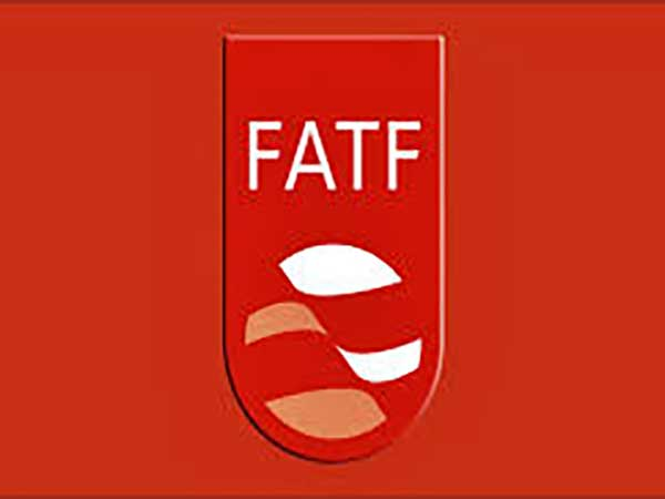 Parliament okays another FATF-related law