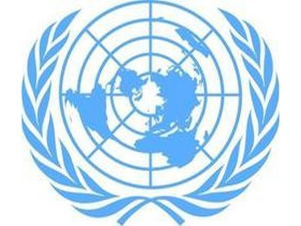 UN Security Council welcomes announcement of ceasefire in Gaza