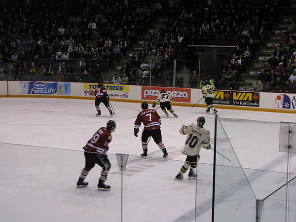 OHL must remove bodychecking, physical contact to play this season, province says
