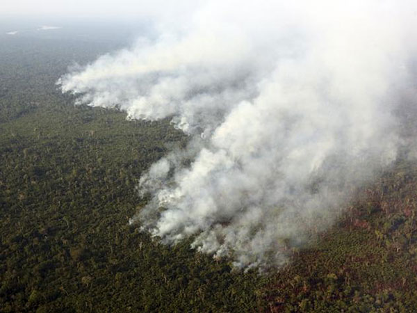 Brazil's Amazon rainforest is burning at a record rate, research center says