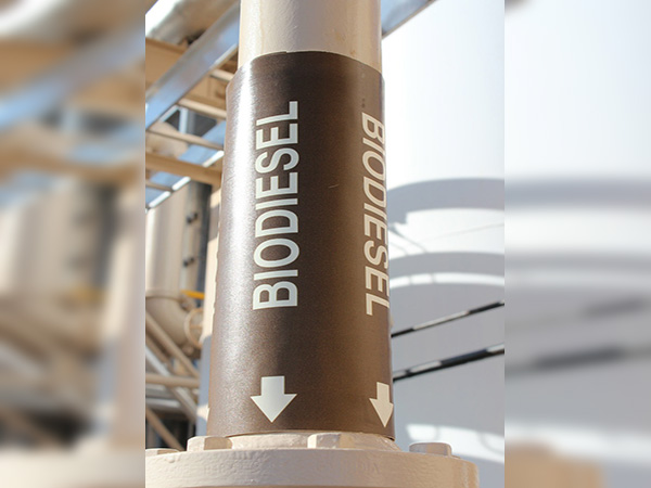 Indonesian ministry confirms biodiesel B30 safe