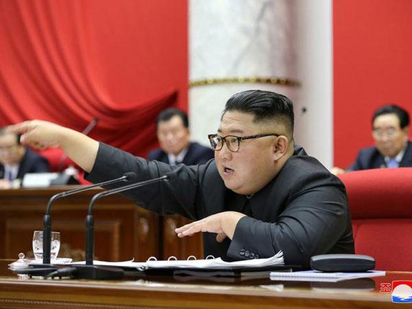 Media show Kim Jong Un's aunt in good health
