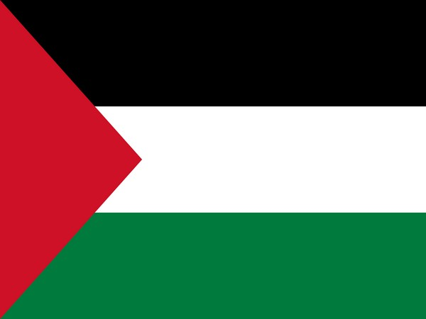 Palestine to invest 100 mln USD in alternative energy sources: PM