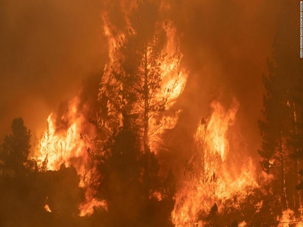 Estrada Fire in U.S. northern California down to 83 acres, 25 pct contained