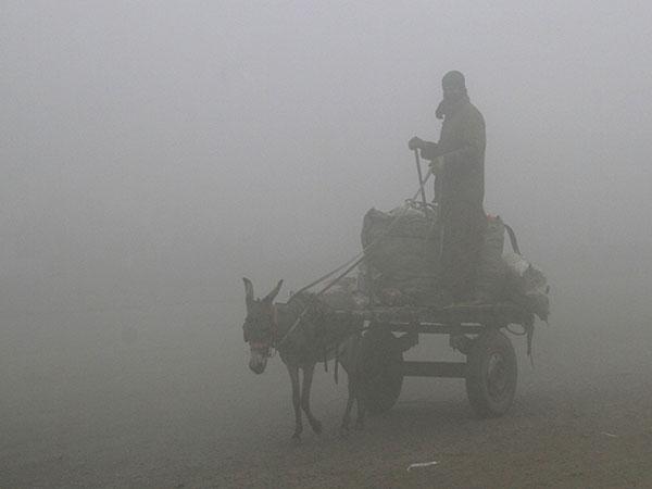 LHC deplores lack of admin response to smog