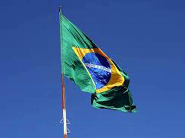 Brazil to eliminate import tariffs on soybeans, corn to combat inflation