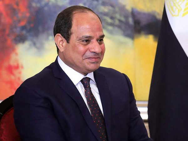 Egyptian president, African Union chief discuss developments of Ethiopia's dam issue