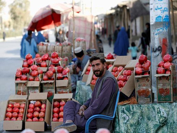 Pakistan Denies Increasing Tariffs on Kandahar Pomegranates