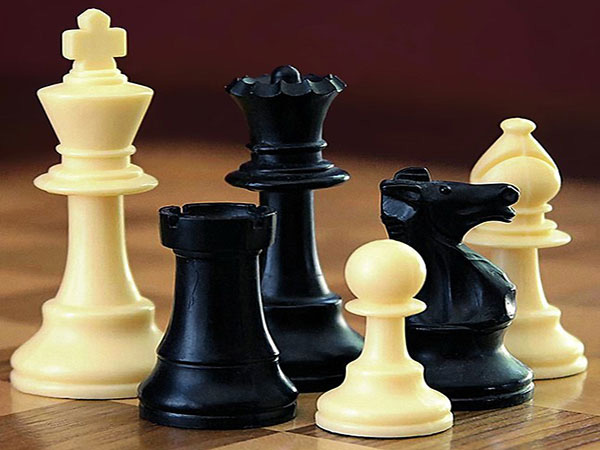 Iran's Firouzja finishes second at Norway chess tournament