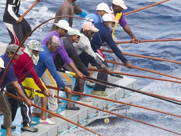 Parliament moves ahead with new fisheries law