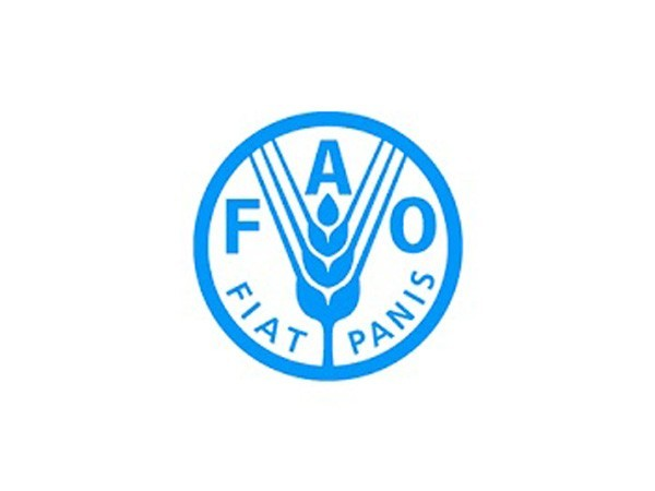 LatAm forests key to environmental sustainability, food security: FAO