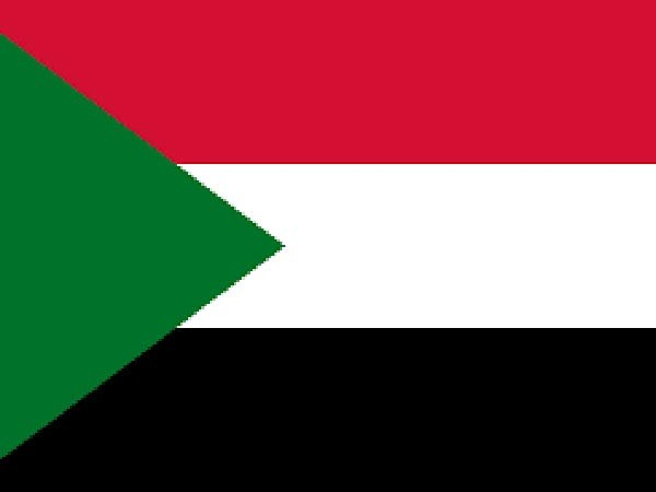 Sudanese health minister tests positive for COVID-19