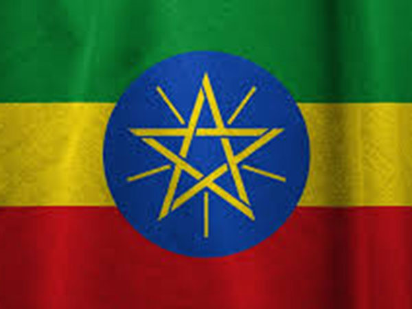 """Nearly 97 pct of voters vote """"Yes"""" for Ethiopia's 11th region: NEBE"""