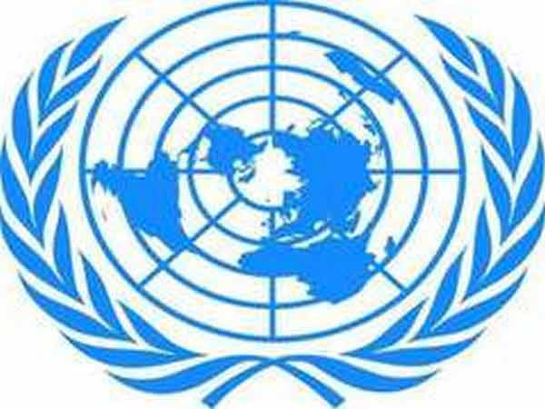 UN Security Council voices concern over terrorism threat in Africa