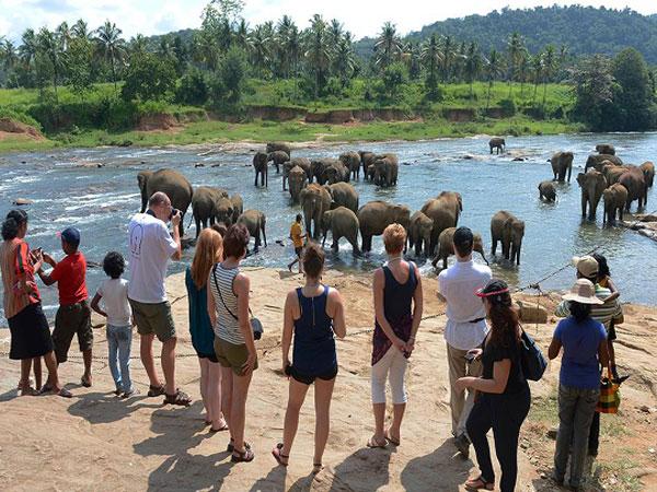 Sri Lanka tourist arrivals drop nearly 28 percent in September 2019