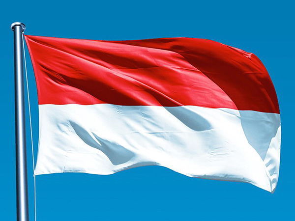 Indonesia's forex reserves reach 131.7 billion dollars in June