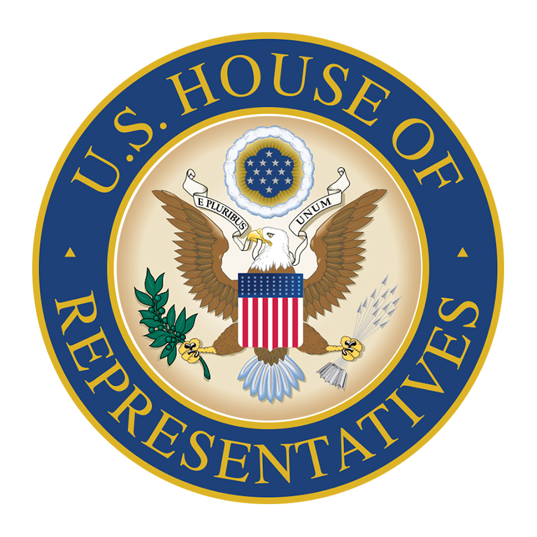 U.S. House passes 3-tln-USD coronavirus relief package amid Republican opposition
