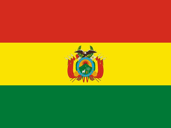 Bolivia's interim gov't declares national emergency over forest fires