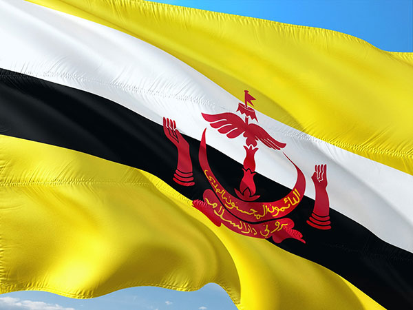 Over 26,000 people attend Brunei's 36th National Day celebrations
