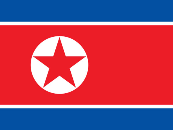 North Korea Appoints Korean Unification Talks Chief as New Foreign Minister - Reports