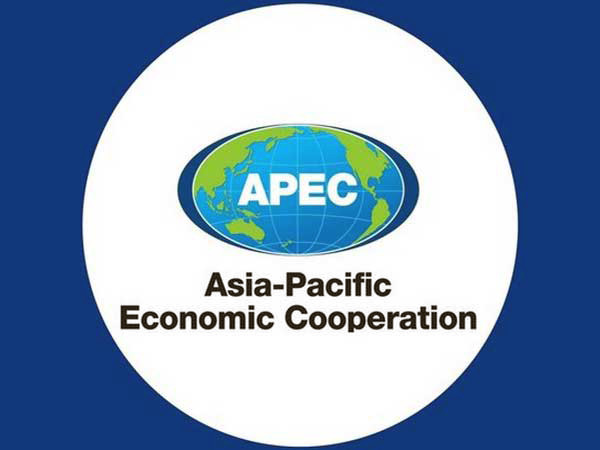 New APEC vision to boost economic growth in Asia-Pacific: MOC official