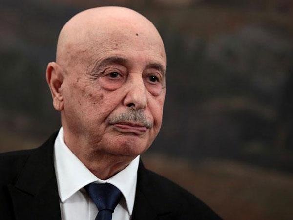 Eastern Libyan Gov't Pledges to Fight Terrorism, Prevent Turkish Intervention - Speaker