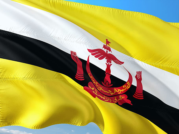 Brunei reports no new COVID-19 cases for 86 straight days