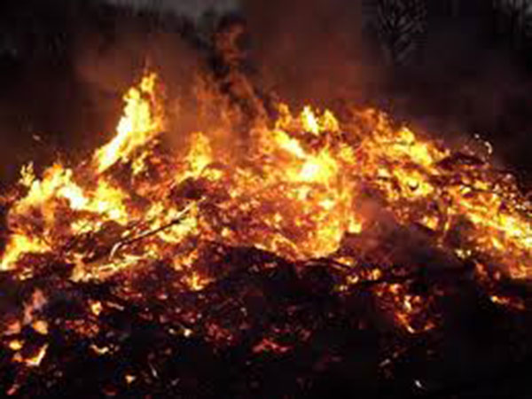 2 killed in fire in eastern India