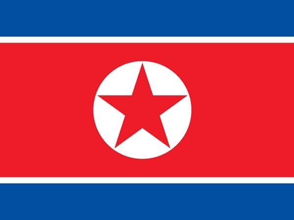 N. Korea tightens antivirus efforts amid increasing activities in spring season