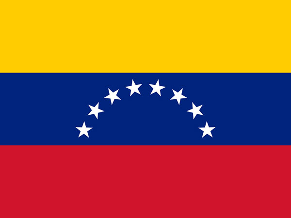 Venezuelans Organize Flash Mob in Caracas to Mark WWII Victory Day