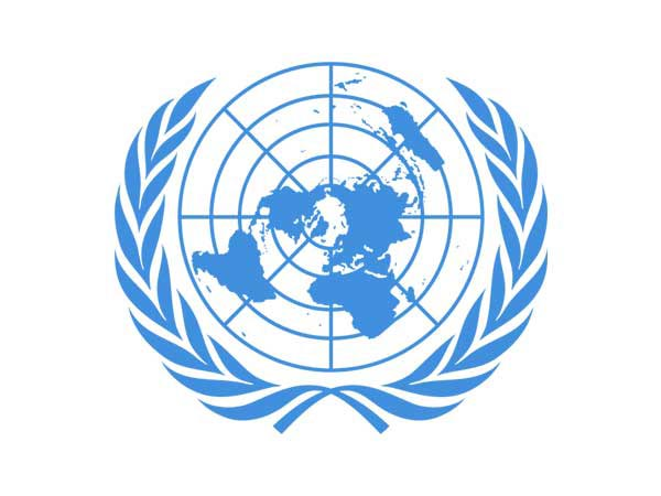 """UN expert highlights """"renewed multilateralism"""" in face of COVID-19 pandemic"""