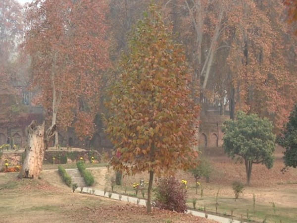 Autumn elevates Kashmir's beauty, tourism expected to pick up