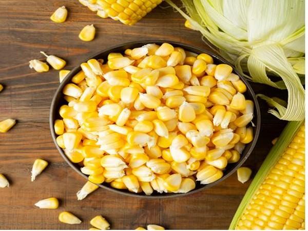 SnacAtac introduces Cornado, a new age corn-based crunchy snack