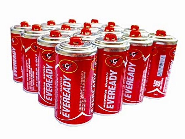 PwC quits as auditor for Eveready Industries