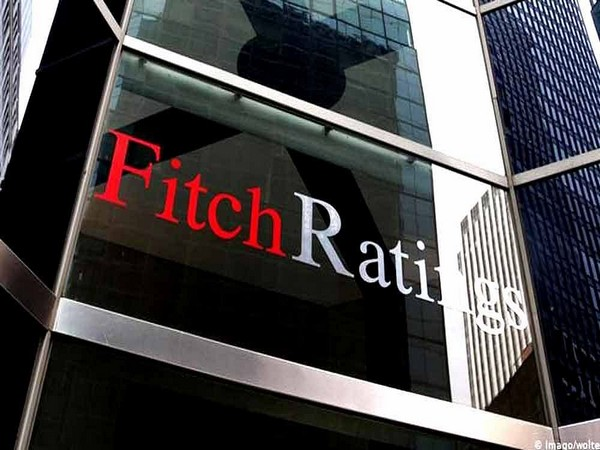 Indian banks to require more capital as safeguard against stress: Fitch