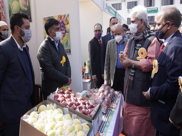 J-K LG launches Market Intervention Scheme to ensure optimum prices, procurement of apples